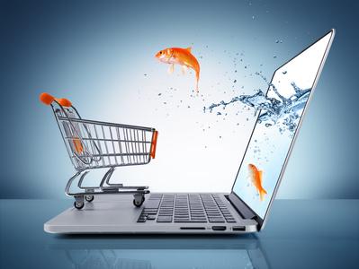 Que faire face aux Aléas des fraudes sur internet